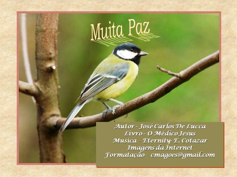 Muita Paz Autor - José Carlos De Lucca Livro - O Médico Jesus