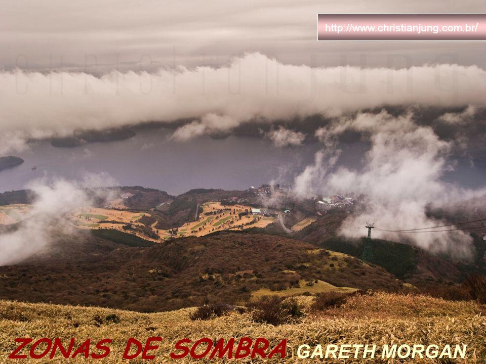 ZONAS DE SOMBRA GARETH MORGAN