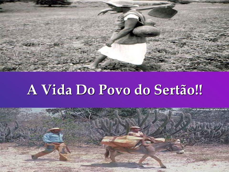 A Vida Do Povo do Sertão!!