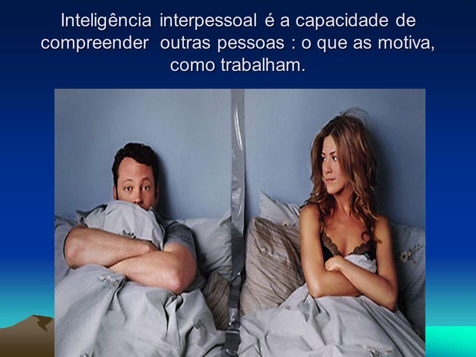 Inteligência interpessoal é a capacidade de compreender outras pessoas : o que as motiva, como trabalham.