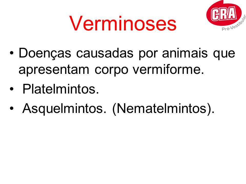 Verminoses Doenças causadas por animais que apresentam corpo vermiforme.