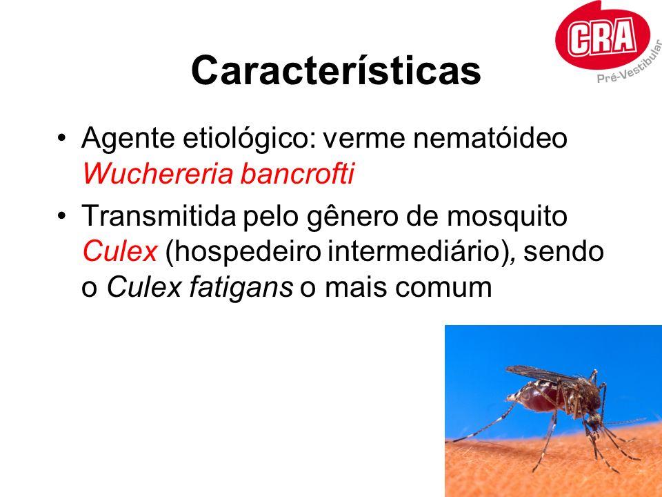 Características Agente etiológico: verme nematóideo Wuchereria bancrofti.
