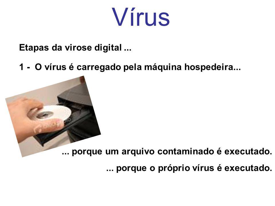 Vírus Etapas da virose digital ...