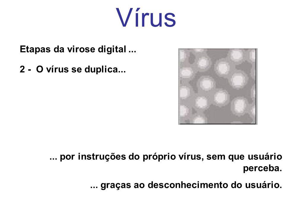 Vírus Etapas da virose digital ... 2 - O vírus se duplica...