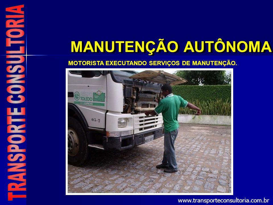 MOTORISTA EXECUTANDO SERVIÇOS DE MANUTENÇÃO.