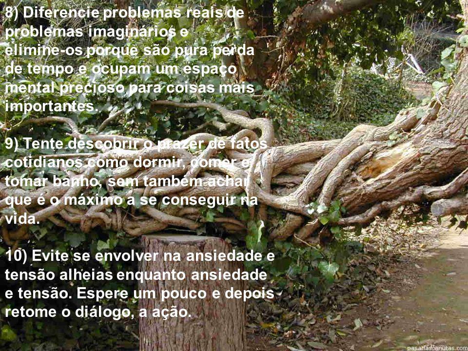 8) Diferencie problemas reais de problemas imaginários e elimine-os porque são pura perda de tempo e ocupam um espaço mental precioso para coisas mais importantes.