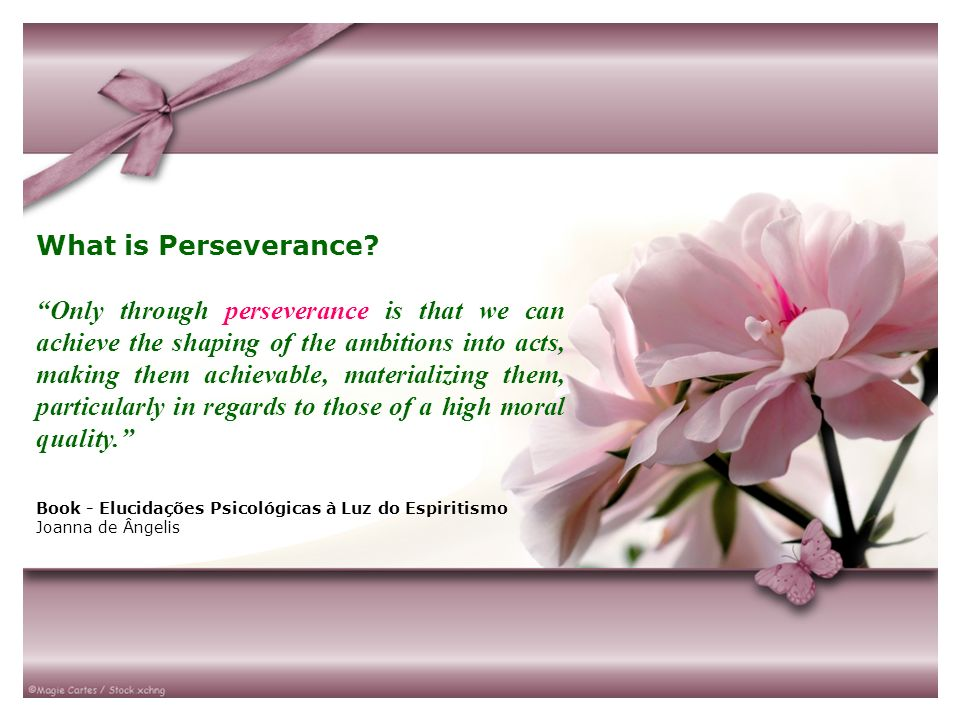 What is Perseverance