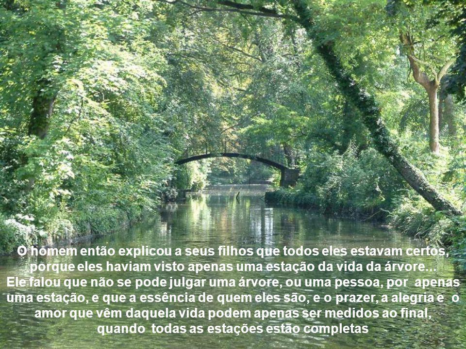 O homem então explicou a seus filhos que todos eles estavam certos, porque eles haviam visto apenas uma estação da vida da árvore...