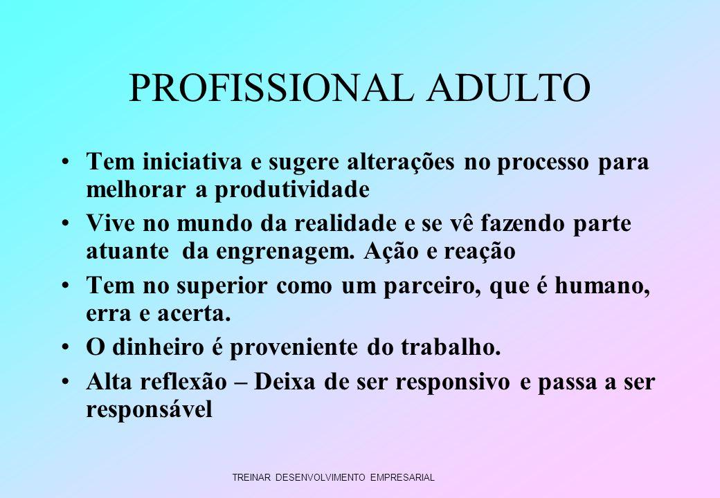 PROFISSIONAL ADULTO Tem iniciativa e sugere alterações no processo para melhorar a produtividade.