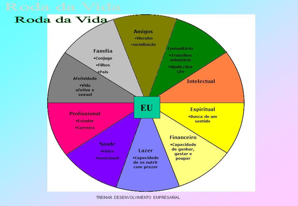 Roda da Vida EU Amigos Família Intelectual Espiritual Profissional