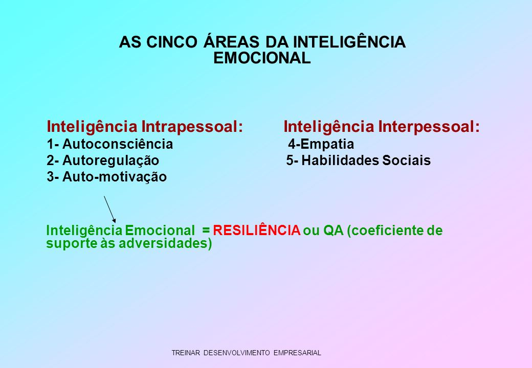 AS CINCO ÁREAS DA INTELIGÊNCIA EMOCIONAL
