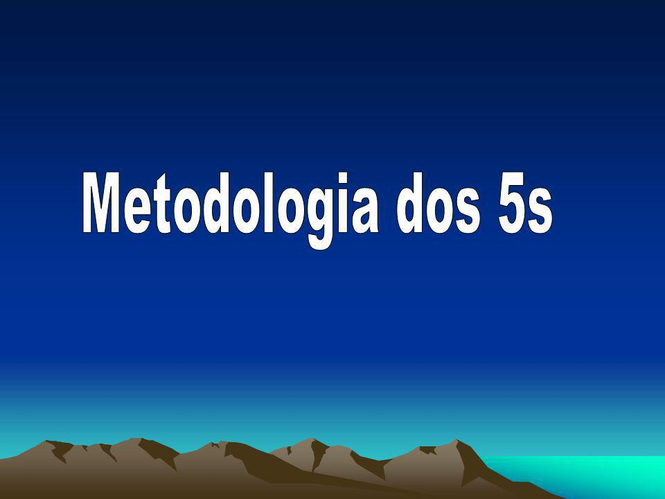 Metodologia dos 5s