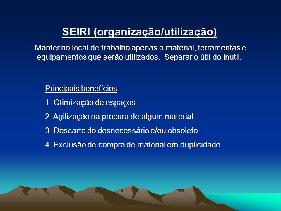 SEIRI (organização/utilização)