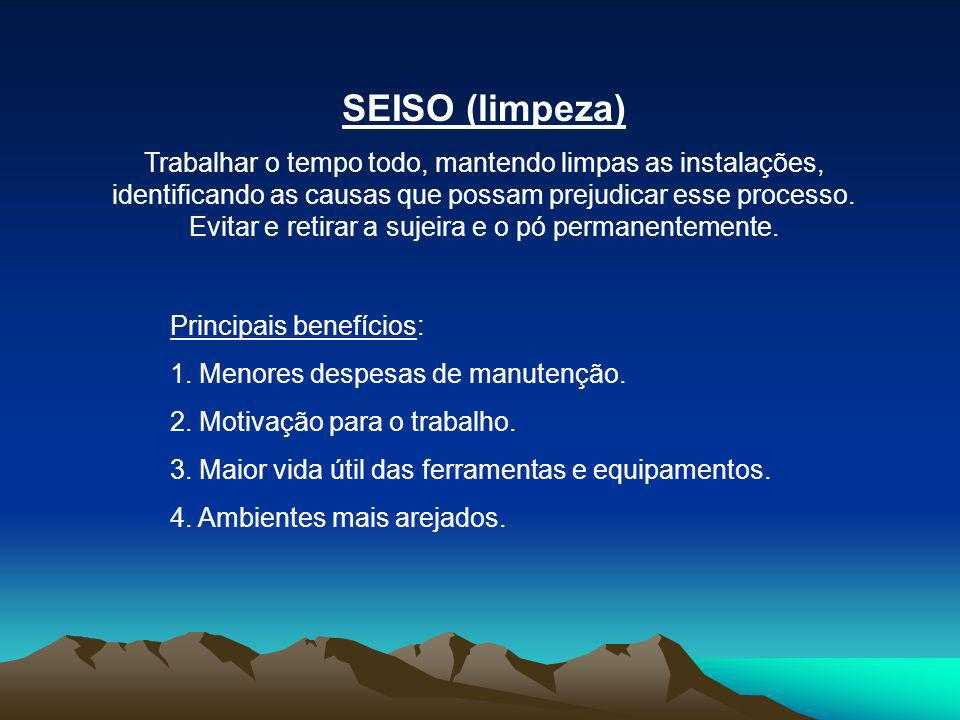 SEISO (limpeza)