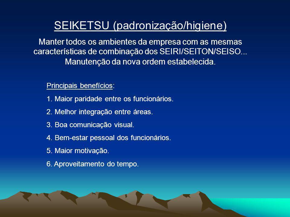 SEIKETSU (padronização/higiene)