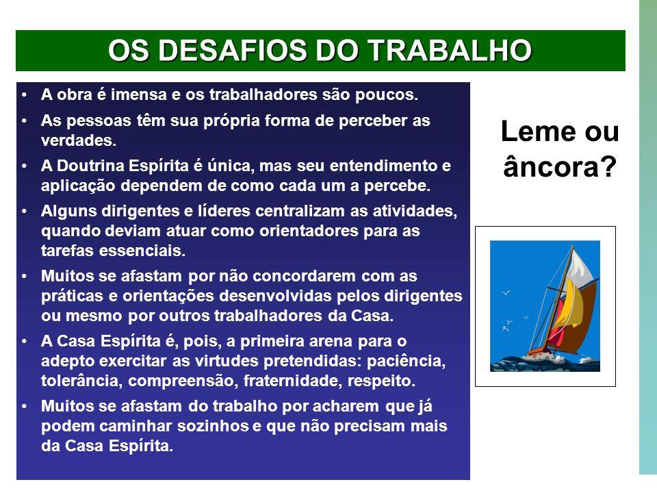 OS DESAFIOS DO TRABALHO