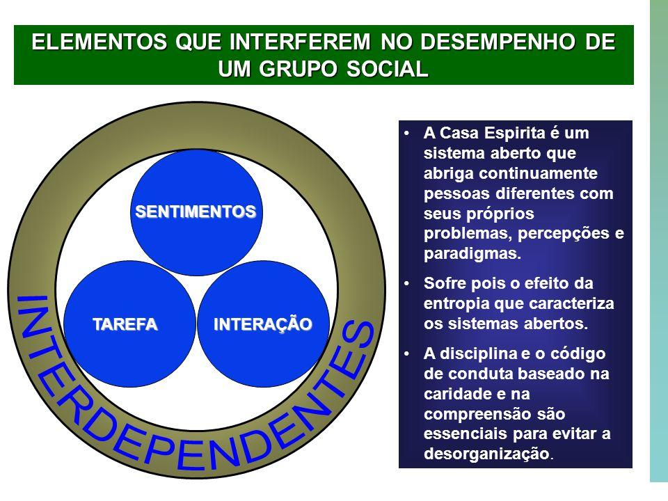 ELEMENTOS QUE INTERFEREM NO DESEMPENHO DE UM GRUPO SOCIAL
