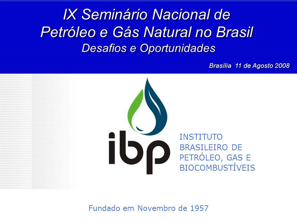 IX Seminário Nacional de Petróleo e Gás Natural no Brasil