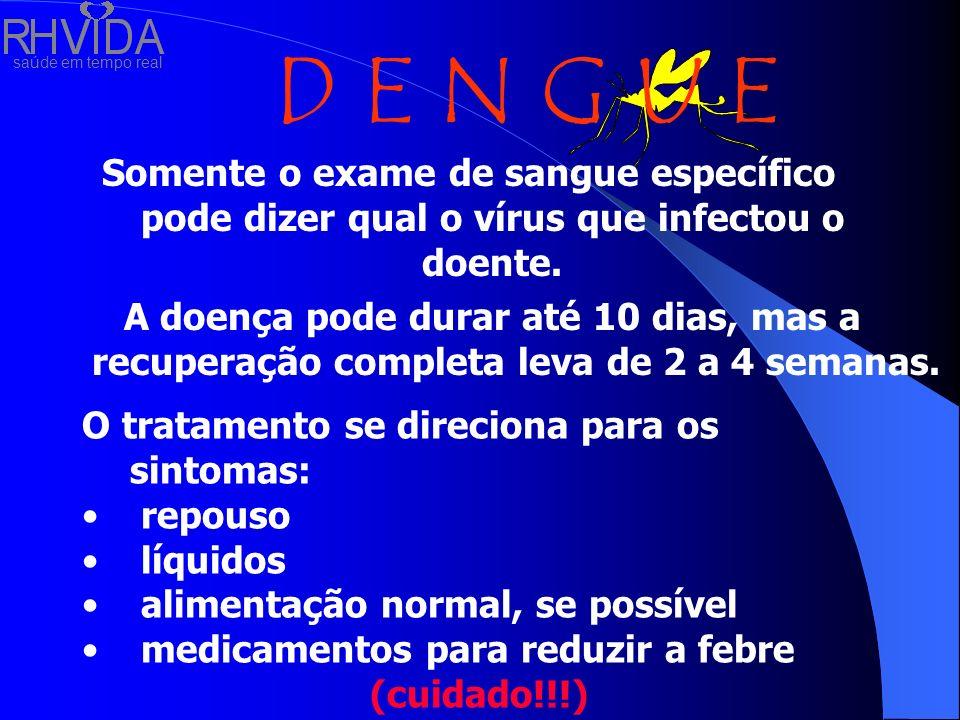 Somente o exame de sangue específico pode dizer qual o vírus que infectou o doente.