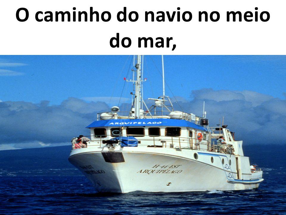 O caminho do navio no meio do mar,