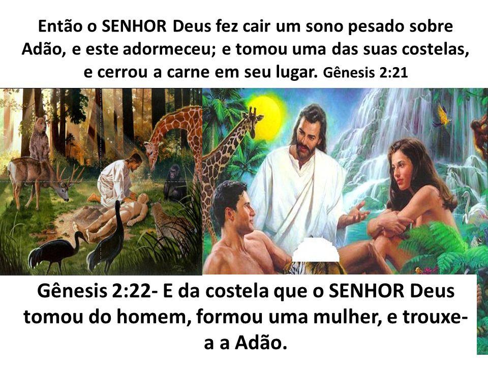 Então o SENHOR Deus fez cair um sono pesado sobre Adão, e este adormeceu; e tomou uma das suas costelas, e cerrou a carne em seu lugar. Gênesis 2:21