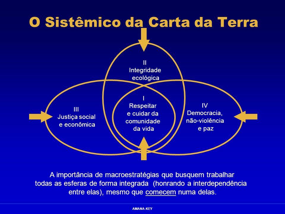 O Sistêmico da Carta da Terra
