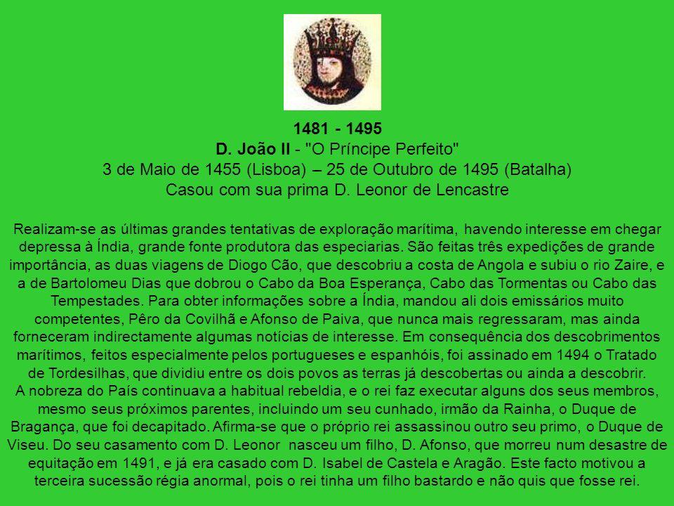 1481 - 1495 D. João II - O Príncipe Perfeito 3 de Maio de 1455 (Lisboa) – 25 de Outubro de 1495 (Batalha) Casou com sua prima D. Leonor de Lencastre