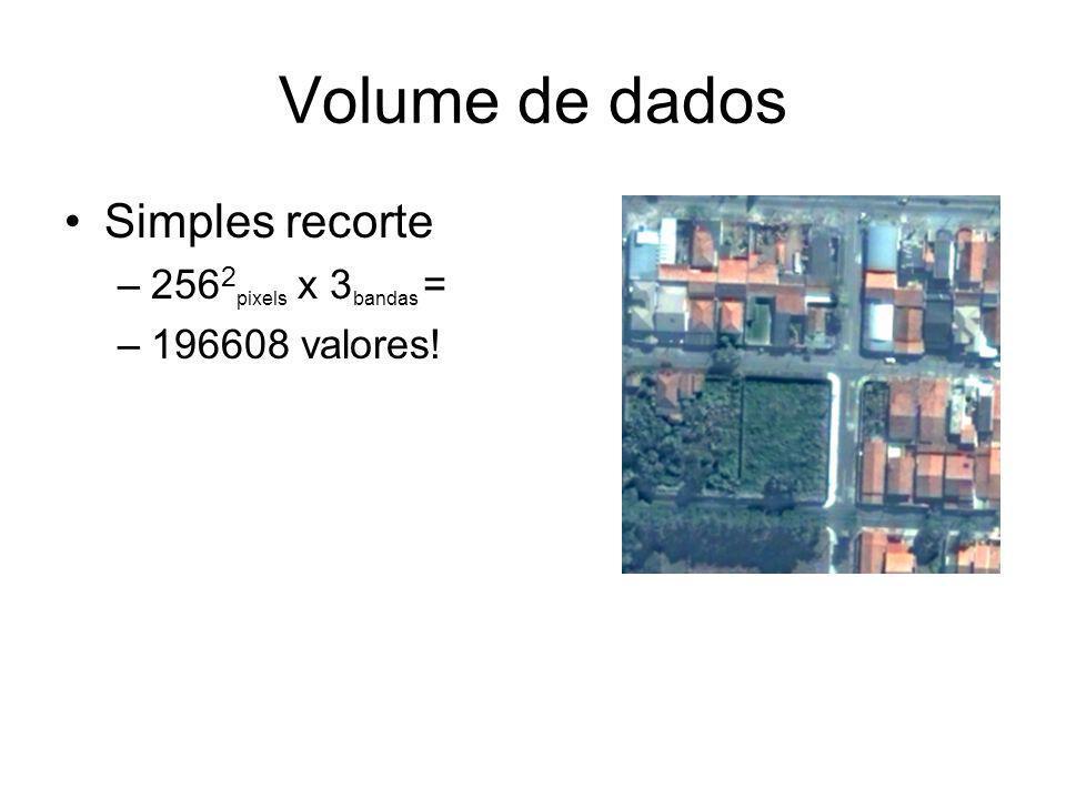 Volume de dados Simples recorte 2562pixels x 3bandas = 196608 valores!
