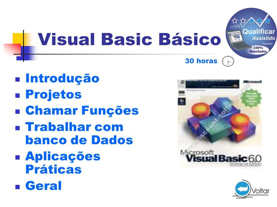 Visual Basic Básico Introdução Projetos Chamar Funções