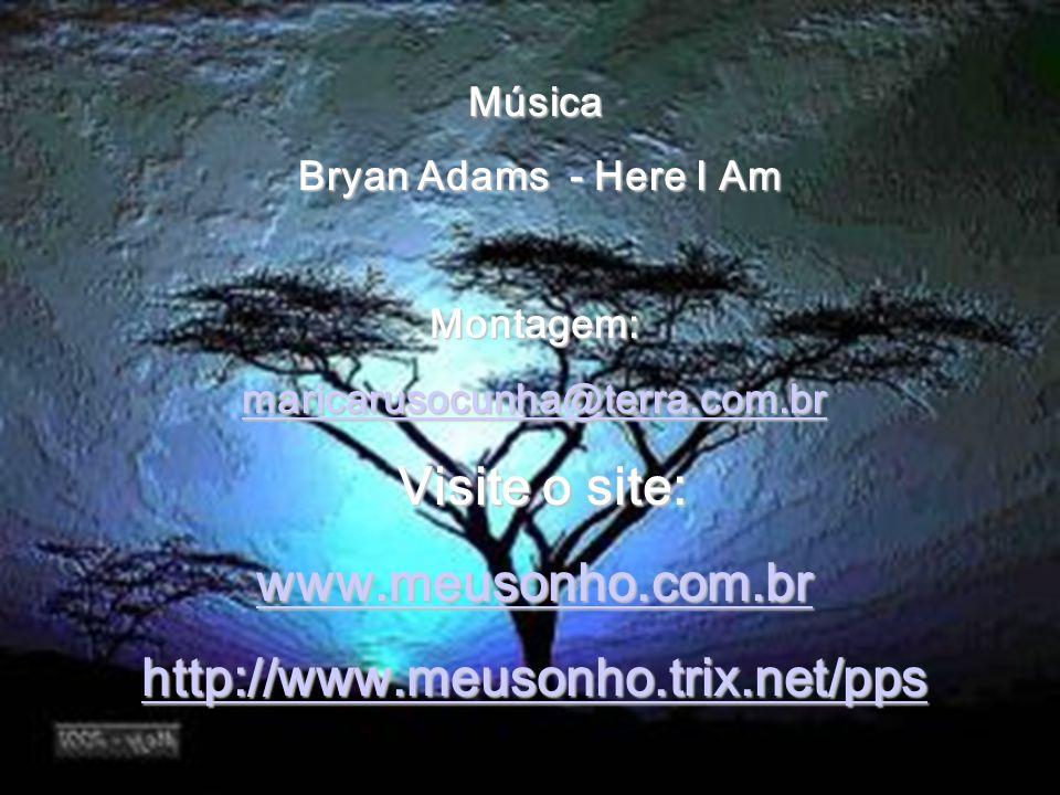 Visite o site: www.meusonho.com.br http://www.meusonho.trix.net/pps