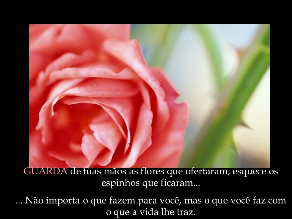 GUARDA de tuas mãos as flores que ofertaram, esquece os espinhos que ficaram...