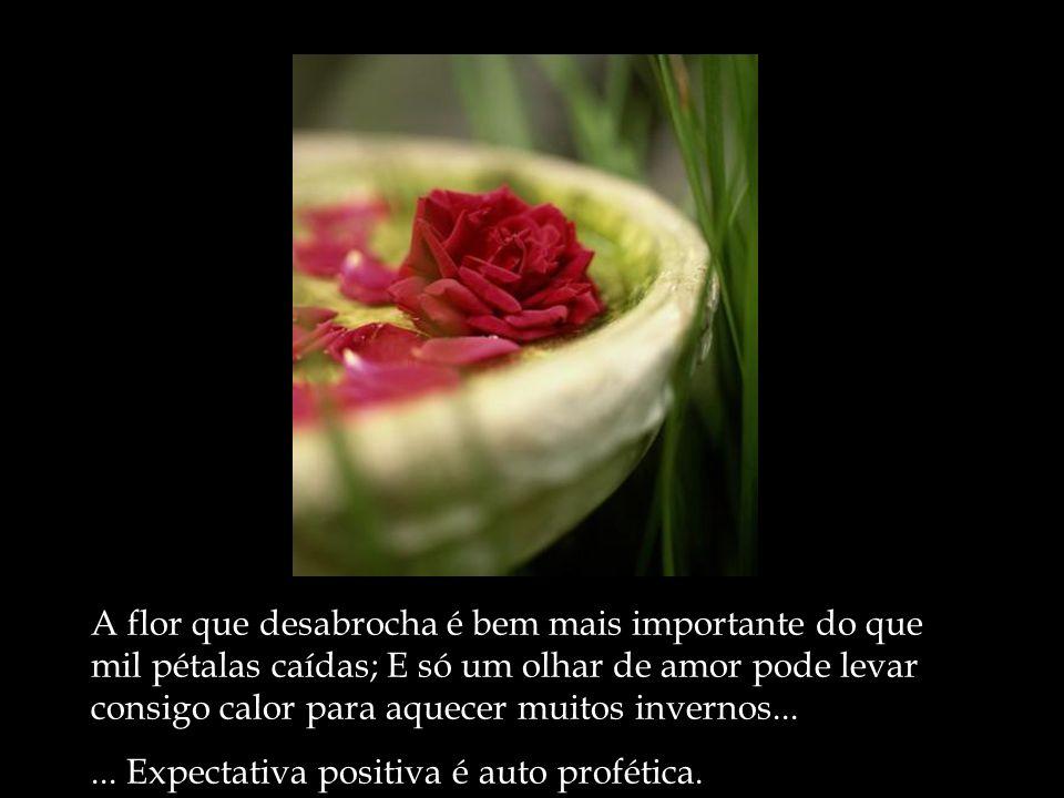 A flor que desabrocha é bem mais importante do que mil pétalas caídas; E só um olhar de amor pode levar consigo calor para aquecer muitos invernos...