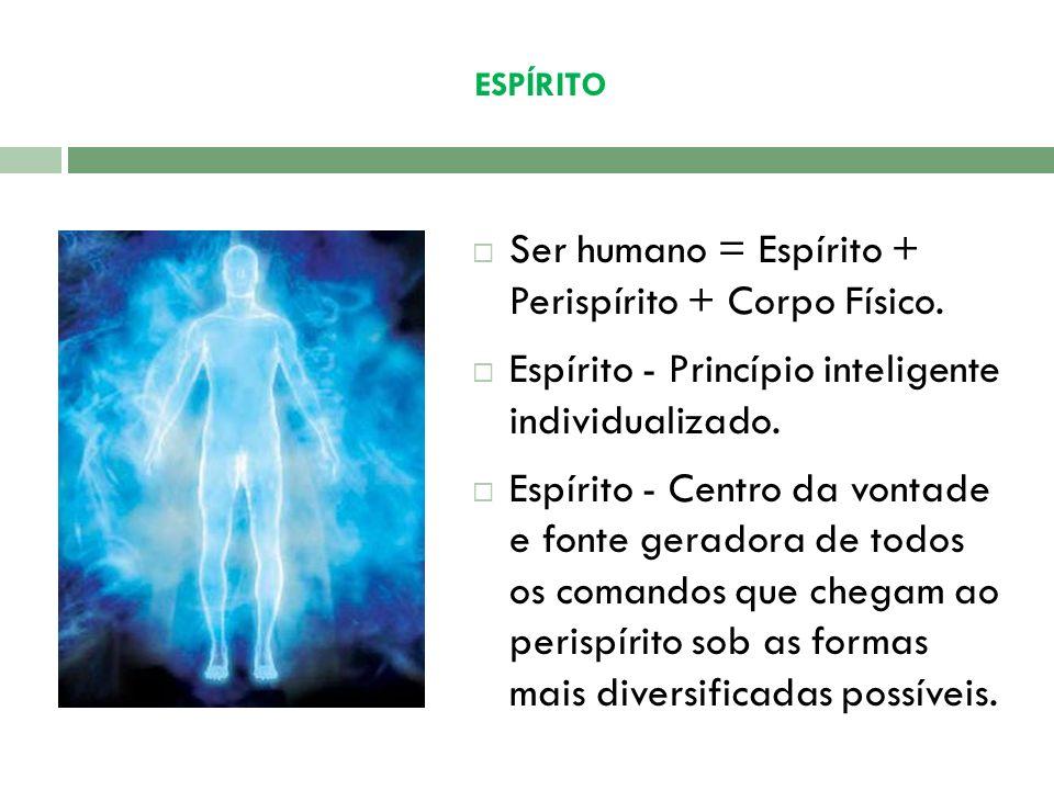 Ser humano = Espírito + Perispírito + Corpo Físico.