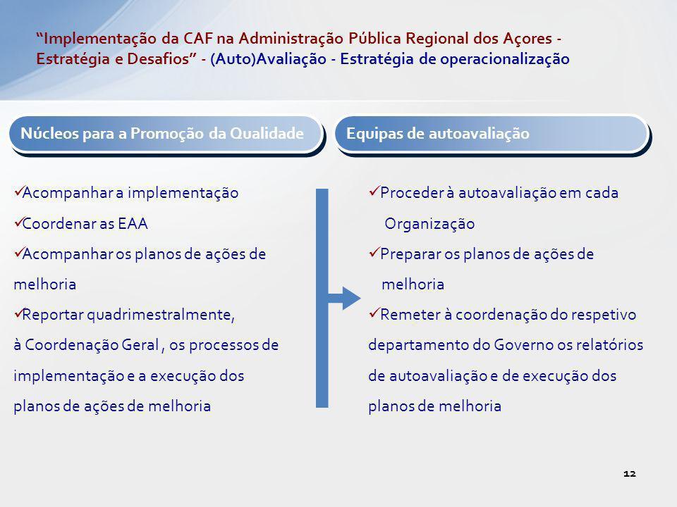 Implementação da CAF na Administração Pública Regional dos Açores - Estratégia e Desafios - (Auto)Avaliação - Estratégia de operacionalização