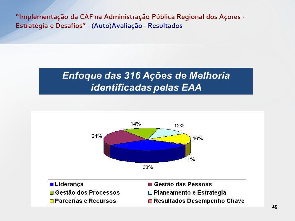 Enfoque das 316 Ações de Melhoria identificadas pelas EAA