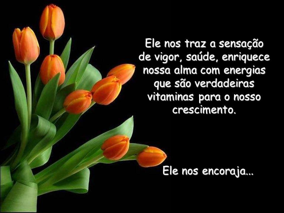de vigor, saúde, enriquece nossa alma com energias