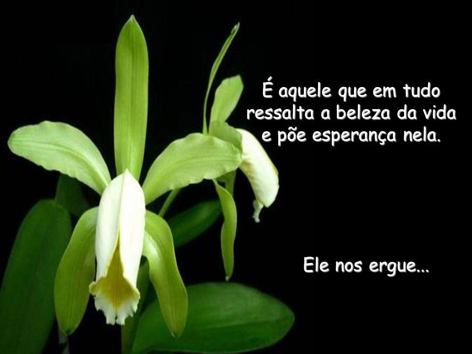 É aquele que em tudo ressalta a beleza da vida e põe esperança nela.