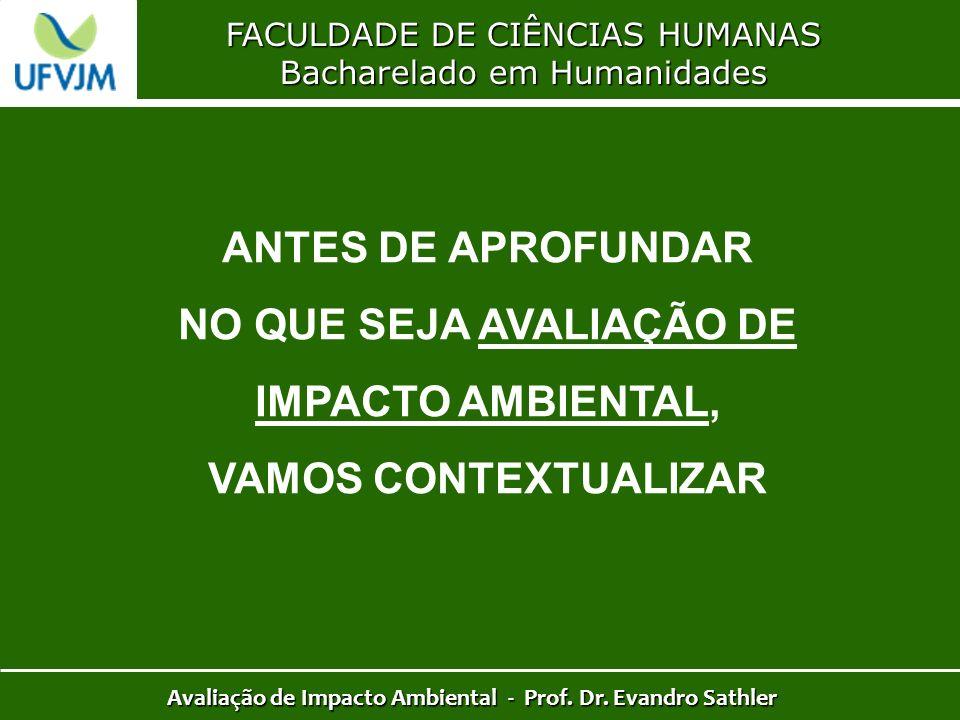NO QUE SEJA AVALIAÇÃO DE IMPACTO AMBIENTAL, VAMOS CONTEXTUALIZAR