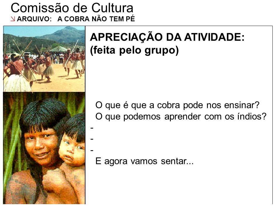 Comissão de Cultura APRECIAÇÃO DA ATIVIDADE: (feita pelo grupo)