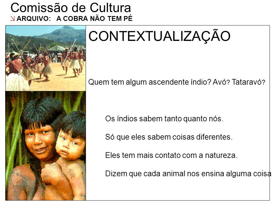 CONTEXTUALIZAÇÃO Comissão de Cultura