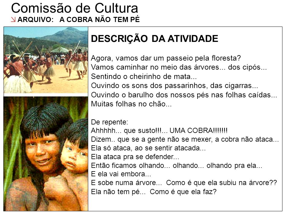 Comissão de Cultura DESCRIÇÃO DAS AÇÕES DESCRIÇÃO DA ATIVIDADE
