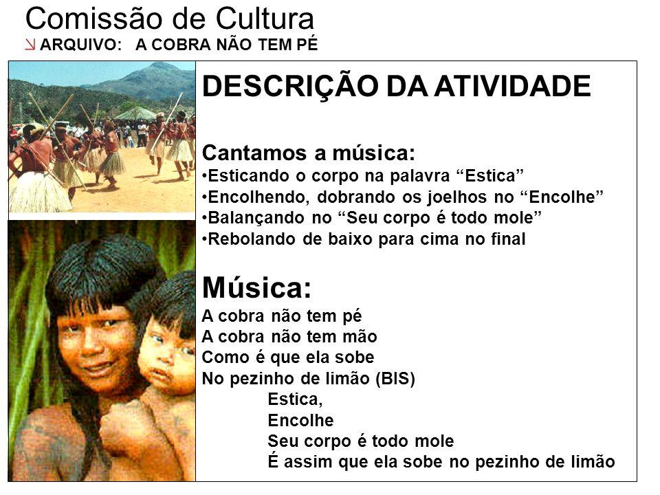 Comissão de Cultura DESCRIÇÃO DA ATIVIDADE DESCRIÇÃO DAS AÇÕES Música: