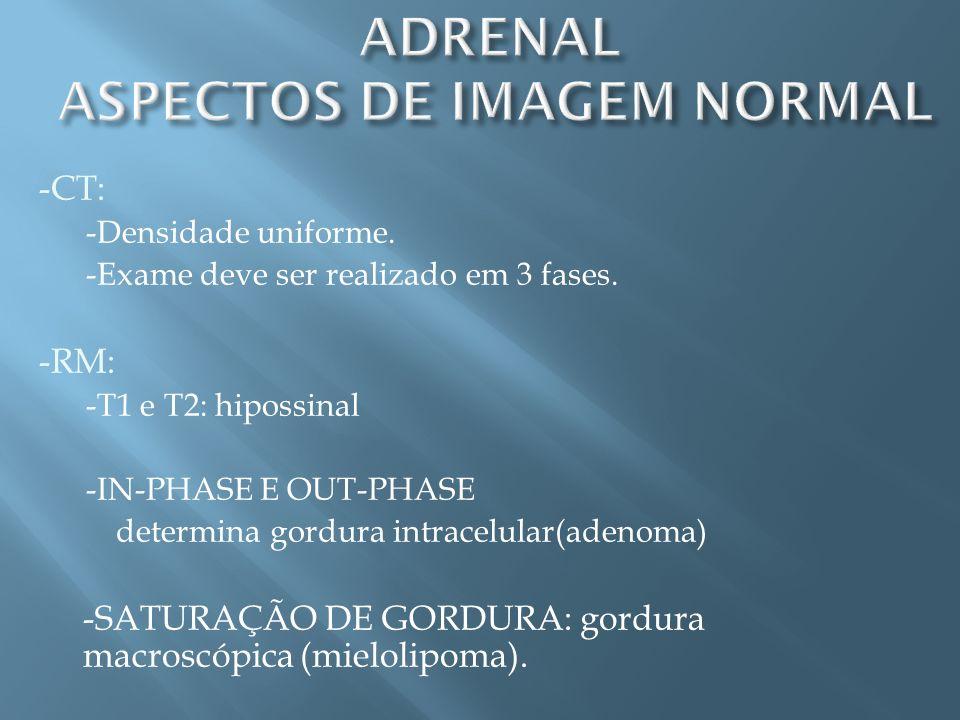 ADRENAL ASPECTOS DE IMAGEM NORMAL