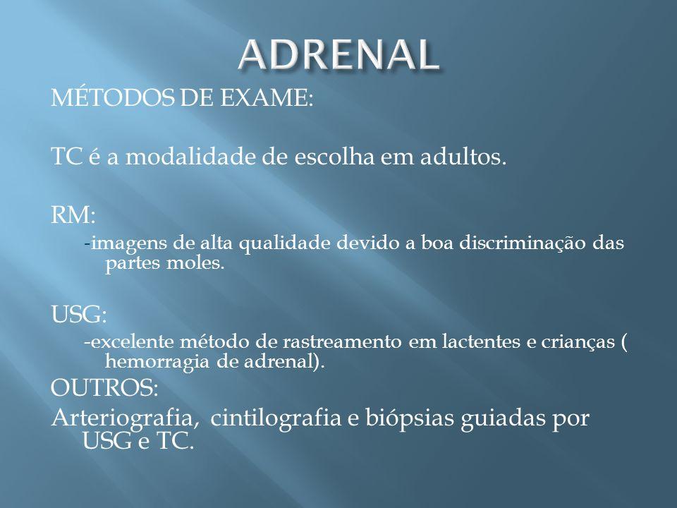ADRENAL MÉTODOS DE EXAME: TC é a modalidade de escolha em adultos. RM: