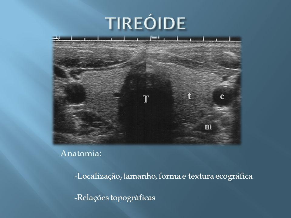 TIREÓIDE Anatomia: -Localização, tamanho, forma e textura ecográfica