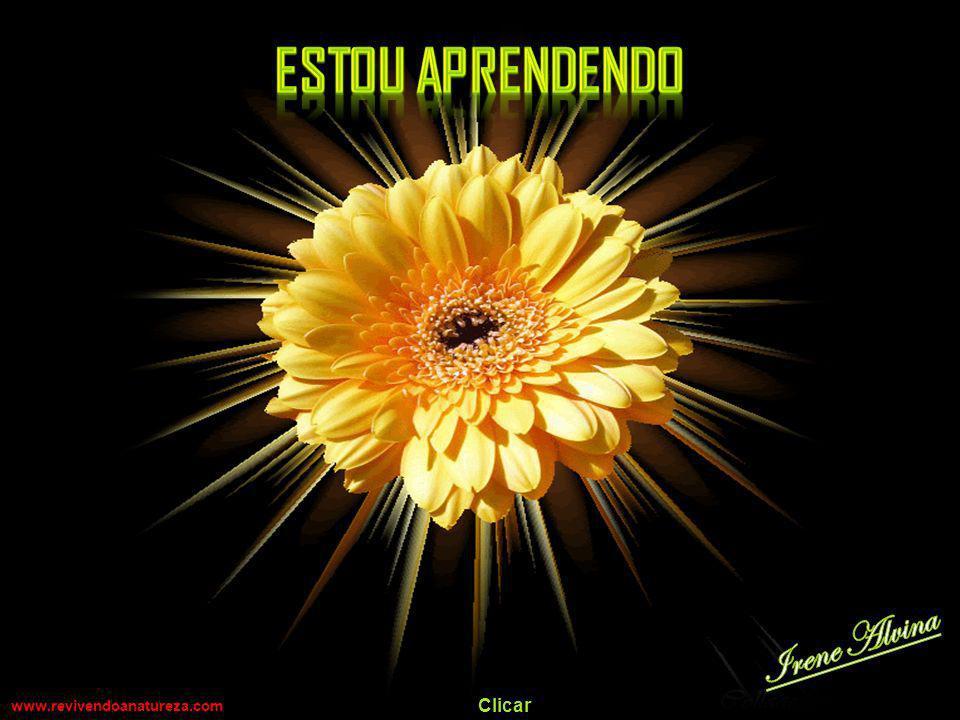 Estou aprendendo Irene Alvina www.revivendoanatureza.com Clicar