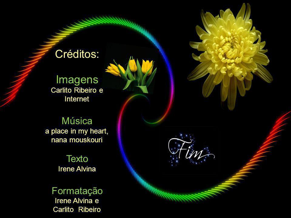 Créditos: Imagens Música Texto Formatação Carlito Ribeiro e Internet