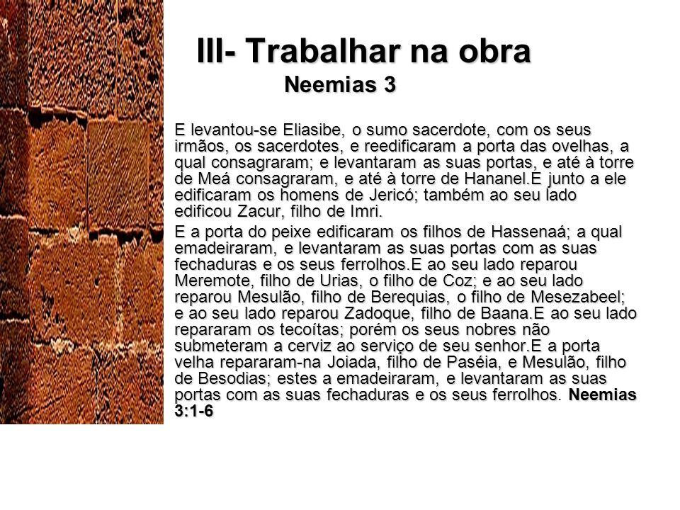 III- Trabalhar na obra Neemias 3
