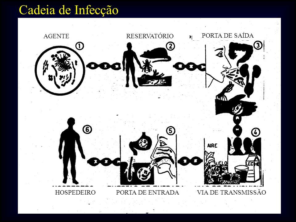 Cadeia de Infecção PORTA DE SAÍDA AGENTE RESERVATÓRIO PORTA DE ENTRADA