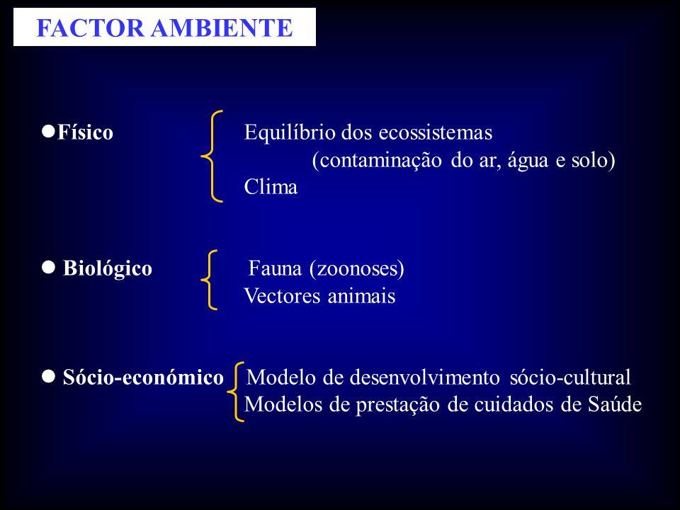 FACTOR AMBIENTE Físico Equilíbrio dos ecossistemas